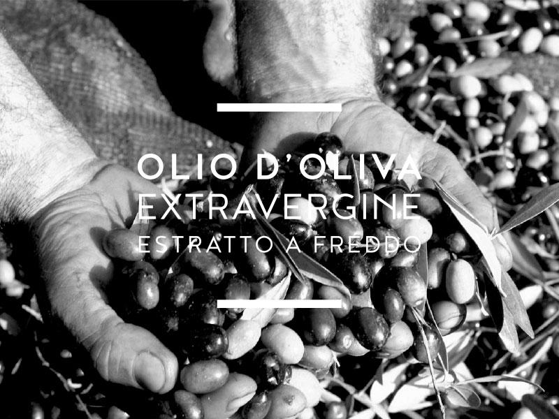 Giarola Olive olio extravergine raccolta